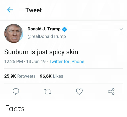 Facts, Iphone, and Twitter: Tweet  Donald J. Trump  @realDonaldTrump  Sunburn is just spicy skin  12:25 PM 13 Jun 19 Twitter for iPhone  25,9K Retweets 96,6K Likes Facts