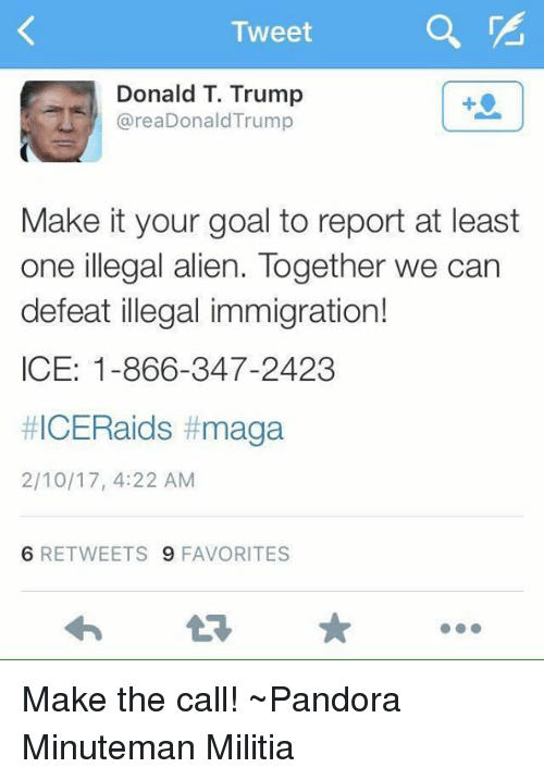 Memes, Pandora, and 🤖: Tweet  Donald T. Trump  area Donald Trump  Make it your goal to report at least  one illegal alien. Together we can  defeat illegal immigration!  ICE: 1-866-347-2423  #ICERaids t maga  2/10/17, 4:22 AM  6 RETWEETS 9 FAVORITES Make the call!  ~Pandora   Minuteman Militia