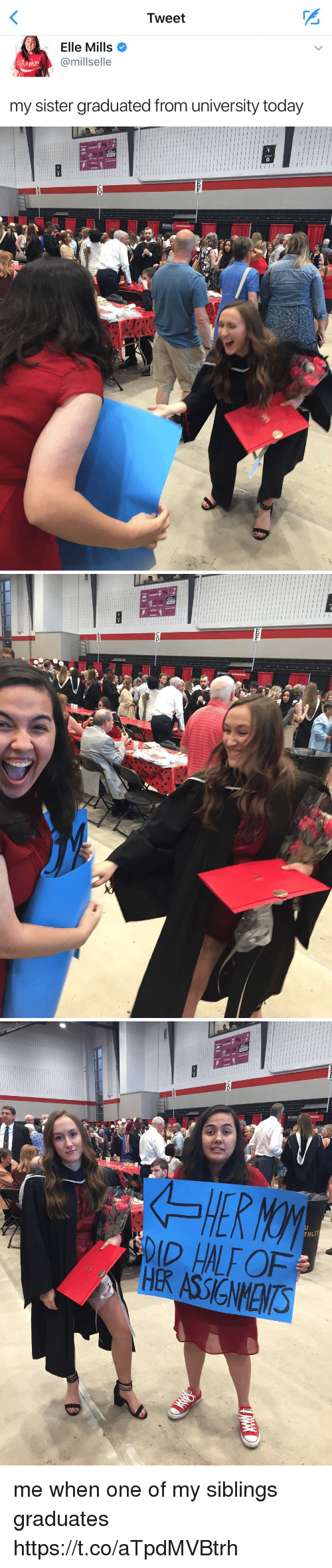 Today, Girl Memes, and Coke: Tweet  Elle Mills  Camillselle  Coke  my sister graduated from university today   i i l III III l III I 1 III III I I I I I I I I  l I II I l I I I l I I I I I I I I l I I I I I I I I I I I I I  I  I I I I   i i i i I I I   ーーーーーー ーーーーー  'st'  SIBWassi xH me when one of my siblings graduates https://t.co/aTpdMVBtrh