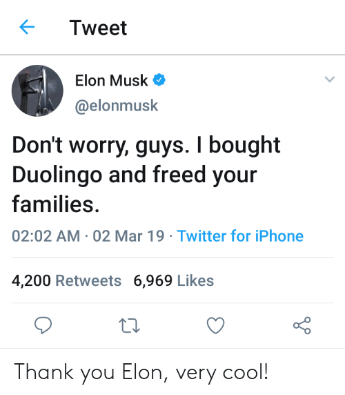 Bailey Jay, Iphone, and Twitter: Tweet  Elon Musk  @elonmusk  Don't worry, guys. I bought  Duolingo and freed your  families  02:02 AM 02 Mar 19 Twitter for iPhone  4,200 Retweets 6,969 Likes Thank you Elon, very cool!