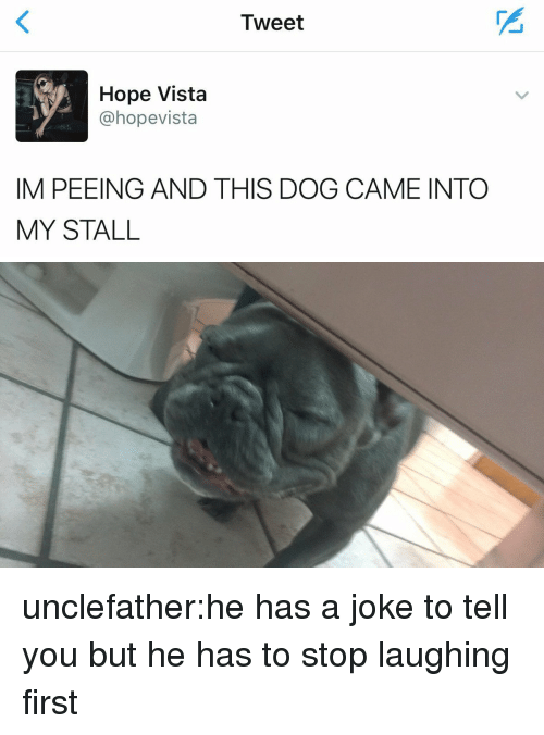 Target, Tumblr, and Blog: Tweet  Hope Vista  @hopevista  IM PEEING AND THIS DOG CAME INTO  MY STALL unclefather:he has a joke to tell you but he has to stop laughing first