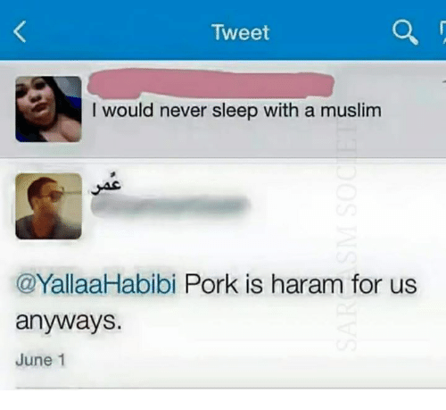 tweet i would never sleep with a muslim yallaahabibi pork 15291831 tweet i would never sleep with a muslim yallaahabibi pork is haram