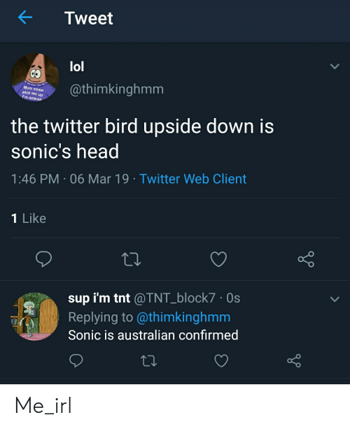 Head, Lol, and Twitter: Tweet  lol  Mom eome  pick me up  m scared  @thimkinghmm  the twitter bird upside down is  sonic's head  1:46 PM 06 Mar 19 Twitter Web Client  1 Like  sup i'm tnt @TNT_block7.Os  Replying to @thimkinghmm  Sonic is australian confirmed Me_irl