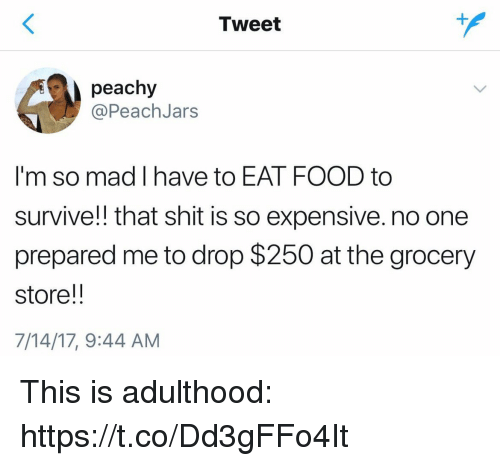 Food, Shit, and Girl Memes: Tweet  peachy  @PeachJars  I'm so mad I have to EAT FOOD to  survive!! that shit is so expensive. no one  prepared me to drop $250 at the grocery  store!!  7/14/17, 9:44 AM This is adulthood: https://t.co/Dd3gFFo4It