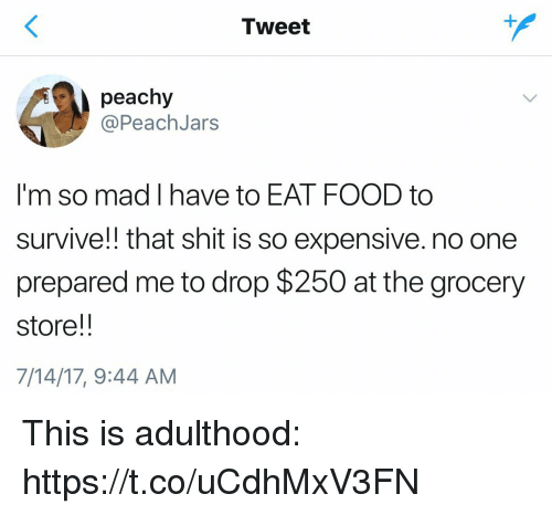 Food, Funny, and Shit: Tweet  peachy  @PeachJars  I'm so mad I have to EAT FOOD to  survive!! that shit is so expensive. no one  prepared me to drop $250 at the grocery  store!!  7/14/17, 9:44 AM This is adulthood: https://t.co/uCdhMxV3FN