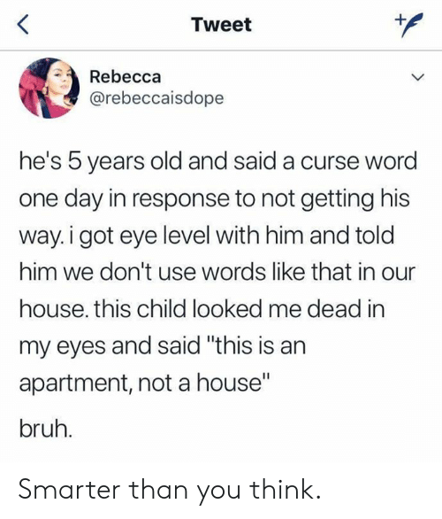 "Bruh, Dank, and House: Tweet  Rebecca  @rebeccaisdope  he's 5 years old and said a curse word  one day in response to not getting his  way.i got eye level with him and told  him we don't use words like that in our  house. this child looked me dead in  my eyes and said ""this is an  apartment, not a house""  bruh. Smarter than you think."