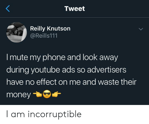 Money, Phone, and youtube.com: Tweet  Reilly Knutson  @Reills111  I mute my phone and look away  during youtube ads so advertisers  have no effect on me and waste their  money I am incorruptible