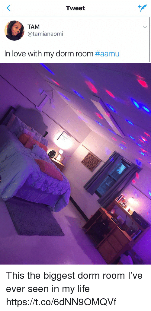 Funny, Life, and Love: Tweet  TAM  @tamianaomi  In love with my dorm room This the biggest dorm room I've ever seen in my life https://t.co/6dNN9OMQVf