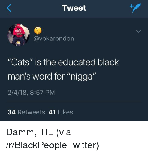 """Blackpeopletwitter, Cats, and Black: Tweet  @vokarondon  """"Cats"""" is the educated black  man's word for """"nigga""""  2/4/18, 8:57 PM  34 Retweets 41 Likes <p>Damm, TIL (via /r/BlackPeopleTwitter)</p>"""
