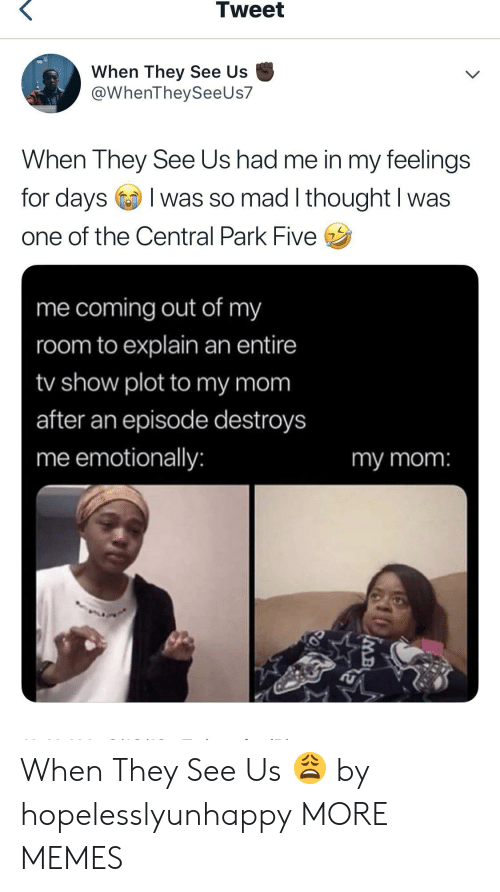 Dank, Memes, and Target: Tweet  When They See Us  @WhenTheySeeUs7  When They See Us had me in my feelings  for daysI  I was so mad I thought I was  one of the Central Park Five  me coming out of my  room to explain an entire  /show plot to my mom  after an episode destroys  me emotionally:  my mom:  MB When They See Us 😩 by hopelesslyunhappy MORE MEMES