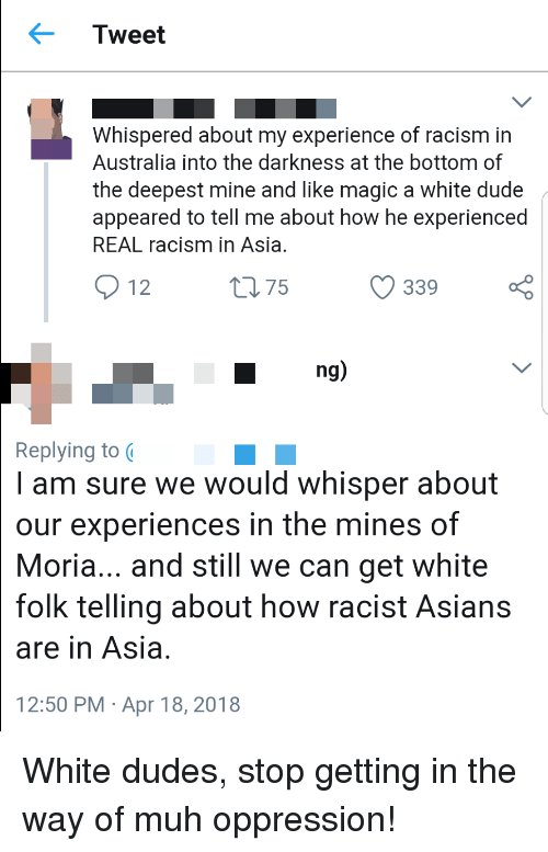 Dude, Racism, and Tumblr: Tweet  Whispered about my experience of racism in  Australia into the darkness at the bottom of  the deepest mine and like magic a white dude  appeared to tell me about how he experienced  REAL racism in Asia  912  339  ng)  Replying to  I am sure we would whisper about  our experiences in the mines of  Moria... and still we can get white  folk telling about how racist Asians  are in Asia  12:50 PM Apr 18, 2018