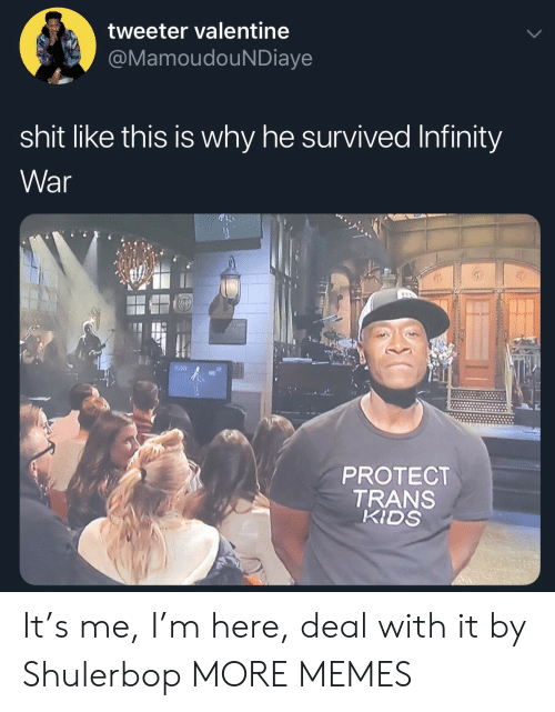 Dank, Memes, and Shit: tweeter valentine  MamoudouNDiaye  shit like this is why he survived Infinity  War  0)  PROTECT  TRANS  KIDS It's me, I'm here, deal with it by Shulerbop MORE MEMES