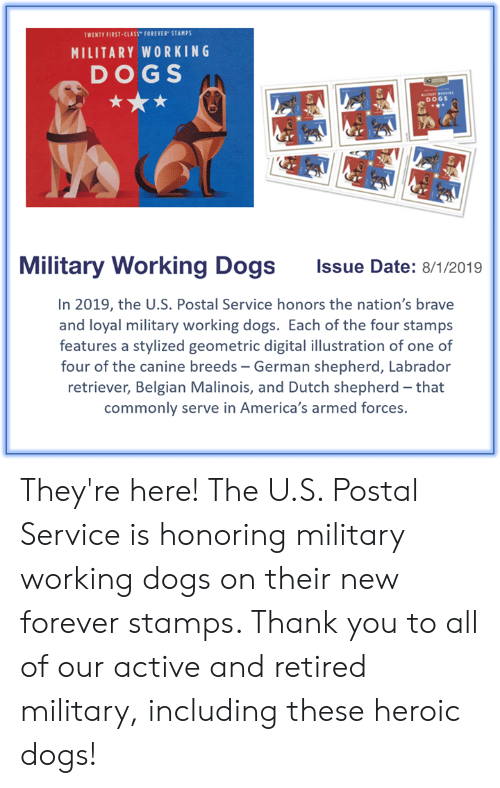 TWENTY FIRST-CLASS FOREVER STAMPS MILITARY WORKING DOGS DOGS