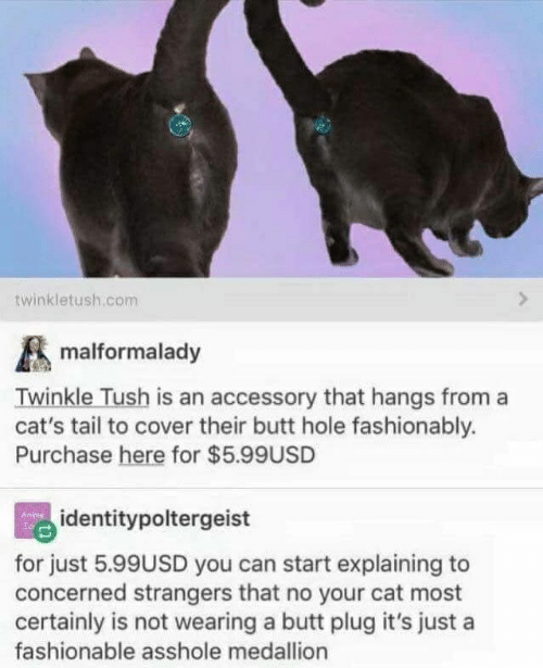 Butt, Cats, and Asshole: twinkletush.com  malformalady  Twinkle Tush is an accessory that hangs from a  cat's tail to cover their butt hole fashionably.  Purchase here for $5.99USD  identitypoltergeist  for just 5.99USD you can start explaining to  concerned strangers that no your cat most  certainly is not wearing a butt plug it's just a  fashionable asshole medallion