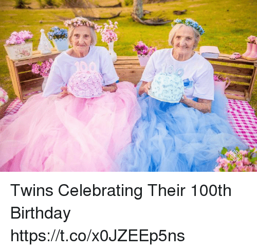 Birthday, Memes, and Twins: Twins Celebrating Their 100th Birthday https://t.co/x0JZEEp5ns