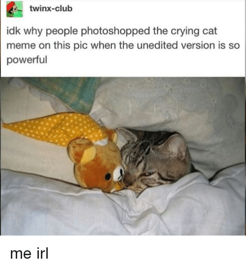 Club, Crying, and Meme: twinx-club  idk why people photoshopped the crying cat  meme on this pic when the unedited version is so  powerful me irl