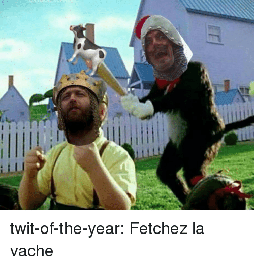 Tumblr, Blog, and Http: twit-of-the-year:  Fetchez la vache