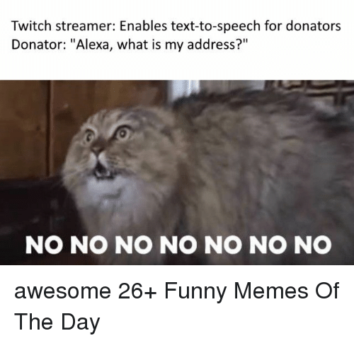"Funny, Memes, and Twitch: Twitch streamer: Enables text-to-speech for donators  Donator: ""Alexa, what is my address?""  NO NO NO NO NO NO NO awesome 26+ Funny Memes Of The Day"
