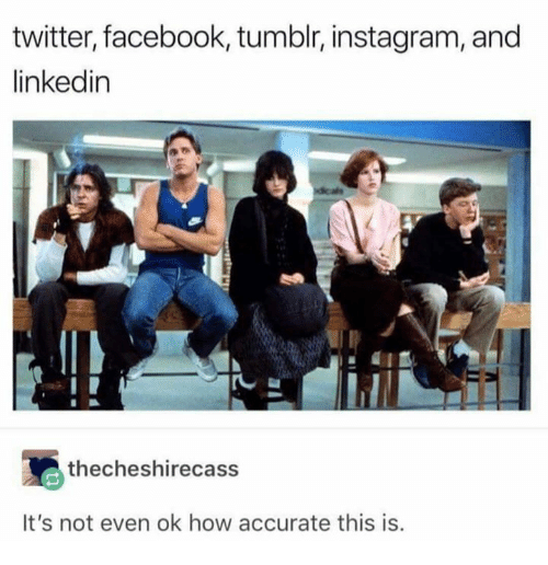 Dank, Facebook, and Instagram: twitter, facebook, tumblr, instagram, and  linkedin  thecheshirecass  It's not even ok how accurate this is.