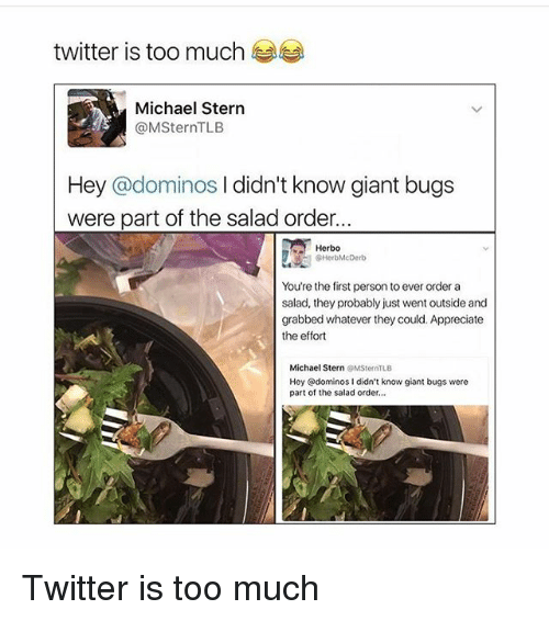 Memes, Too Much, and Twitter: twitter is too much  Michael Stern  @MSternTLB  Hey ominos l didn't know giant bugs  were part of the salad order...  Herbo  AHerbMcDerb  You're the first person to ever order a  salad, they probably just went outside and  grabbed whatever they could. Appreciate  the effort  Michael Stern  MSternTLB  Hey @dominos I didn't know giant bugs were  part of the salad order, Twitter is too much