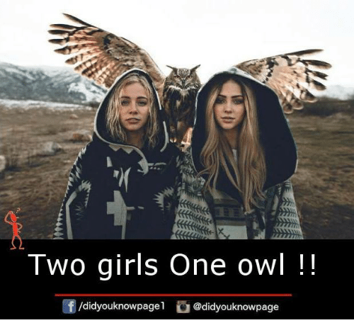 Memes, 🤖, and Owl: Two girls One owl  /didyouknowpagel  @didyouknowpage