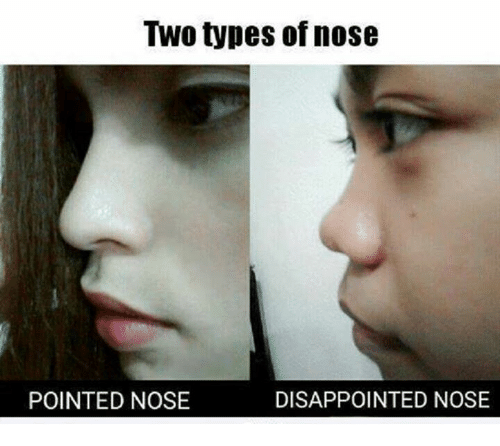 TWO Types of Nose DISAPPOINTED NOSE POINTED NOSE