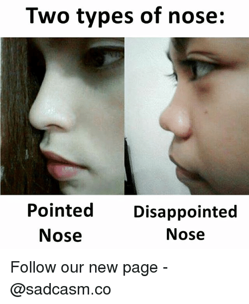Disappointed, Memes, and 🤖: Two types of nose:  Pointed Disappointed  Nose  Nose Follow our new page - @sadcasm.co