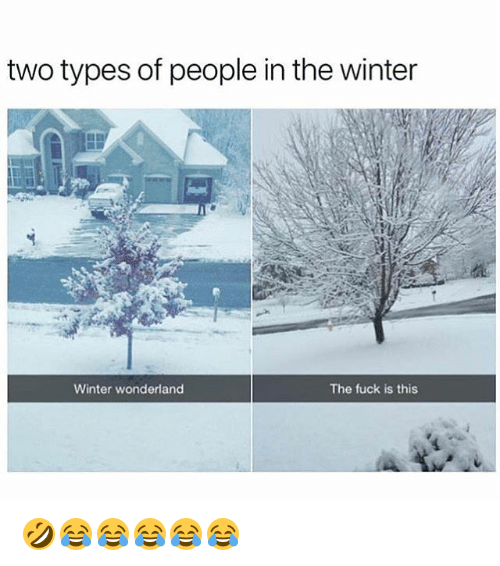 Winter, Fuck, and Girl Memes: two types of people in the winter  Winter wonderland  The fuck is this 🤣😂😂😂😂😂
