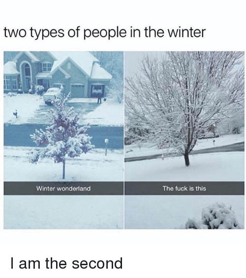 Winter, Fuck, and Girl Memes: two types of people in the winter  Winter wonderland  The fuck is this I am the second