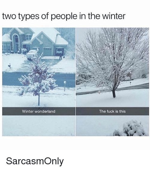 Funny, Memes, and Winter: two types of people in the winter  Winter wonderland  The fuck is this SarcasmOnly