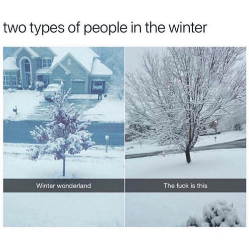Dank, Winter, and Fuck: two types of people in the winter  Winter wonderland  The fuck is this