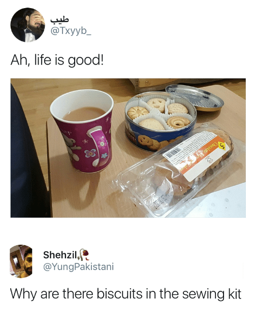 Life, Good, and Life Is Good: @Txyyb_  Ah, life is good!   Shehzil,  @YungPakistani  Why are there biscuits in the sewing kit