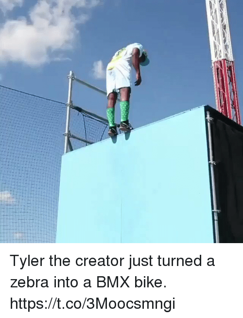 Funny, Tyler the Creator, and Bmx: Tyler the creator just turned a zebra into a BMX bike. https://t.co/3Moocsmngi