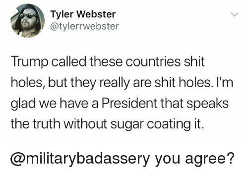 Memes, Shit, and Holes: Tyler Webster  @tylerrwebster  Trump called these countries shit  holes, but they really are shit holes. I'm  glad we have a President that speaks  the truth without sugar coating it. @militarybadassery you agree?