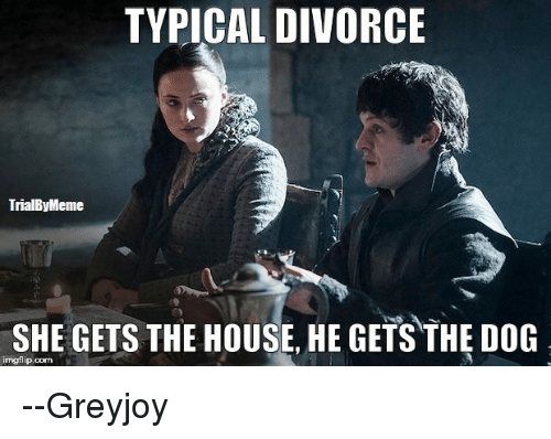 Memes, Divorce, and 🤖: TYPICAL DIVORCE  TrialByMeme  SHE GETS THE HOUSE, HE GETS THE DOG  imgflip com --Greyjoy