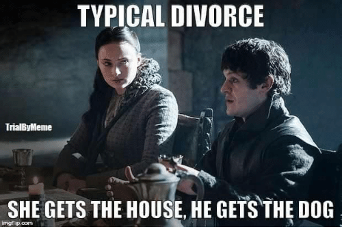 Memes, Divorce, and 🤖: TYPICAL DIVORCE  TrialByMeme  SHE GETS THE HOUSE HE GETS THE DOG  rngflip.com