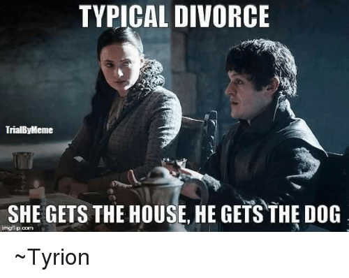 Memes, Divorce, and 🤖: TYPICAL DIVORCE  TrialByMeme  SHE GETS THE HOUSE, HE GETS THE DOG  rngflip oom ~Tyrion
