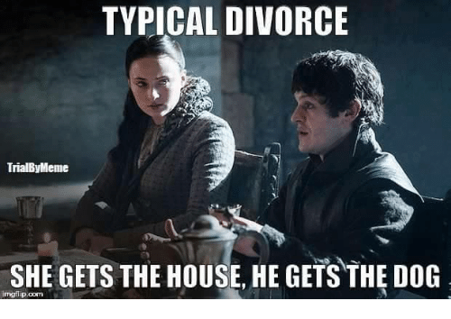 Memes, Divorce, and 🤖: TYPICAL DIVORCE  TrialByMeme  SHE GETS THE HOUSE, HE GETS THE DOG  rngflip oom