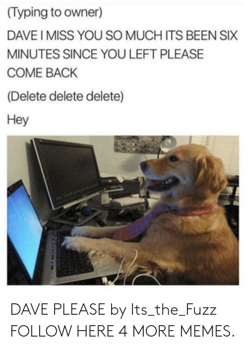 Dank, Memes, and Target: (Typing to owner)  DAVE I MISS YOU SO MUCH ITS BEEN SIX  MINUTES SINCE YOU LEFT PLEASE  COME BACK  (Delete delete delete)  Hey DAVE PLEASE by Its_the_Fuzz FOLLOW HERE 4 MORE MEMES.