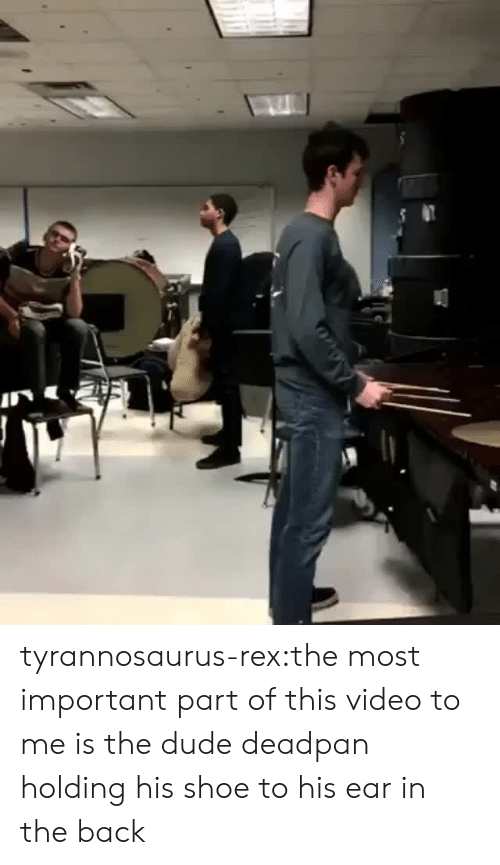 Dude, Tumblr, and Blog: tyrannosaurus-rex:the most important part of this video to me is the dude deadpan holding his shoe to his ear in the back