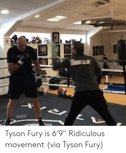 "Fury, Tyson Fury, and Tyson: Tyson Fury is 6'9""  Ridiculous movement (via Tyson Fury)"