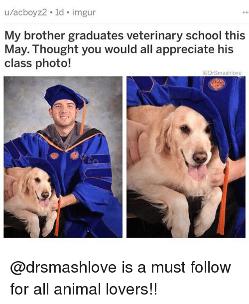 Memes, School, and Animal: u/acboyz2 ld imgur  My brother graduates veterinary school this  May. Thought you would all appreciate his  class photo!  @DrSmashlove @drsmashlove is a must follow for all animal lovers!!