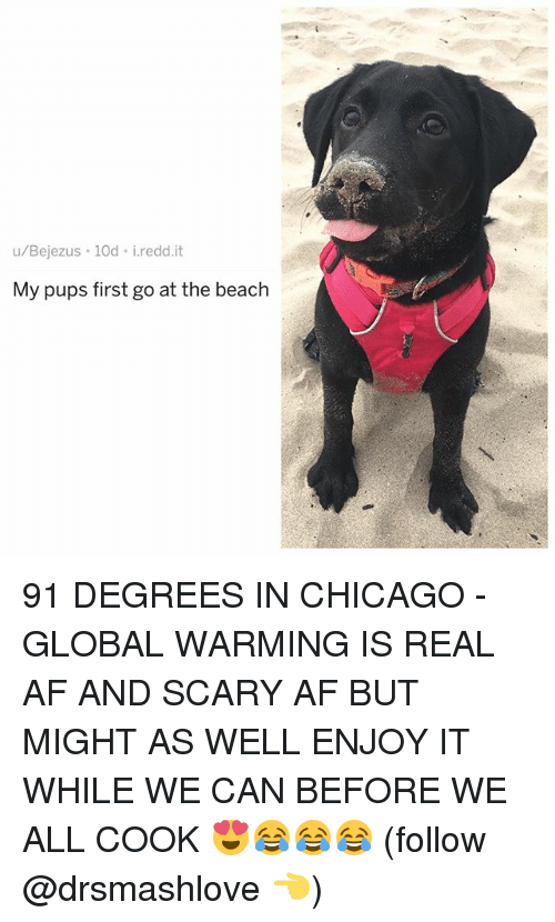 Af, Chicago, and Global Warming: u/Bejezus 10d i.redd.it  My pups first go at the beach 91 DEGREES IN CHICAGO - GLOBAL WARMING IS REAL AF AND SCARY AF BUT MIGHT AS WELL ENJOY IT WHILE WE CAN BEFORE WE ALL COOK 😍😂😂😂 (follow @drsmashlove 👈)