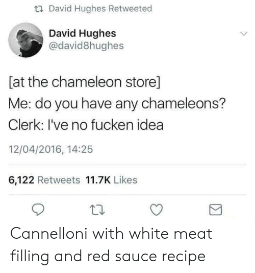 Chameleon, White, and Sauce: u David Hughes Retweeted  David Hughes  @david8hughes  [at the chameleon store]  Me: do you have any chameleons?  Clerk: I've no fucken idea  12/04/2016, 14:25  6,122 Retweets 11.7K Likes Cannelloni with white meat filling and red saucerecipe