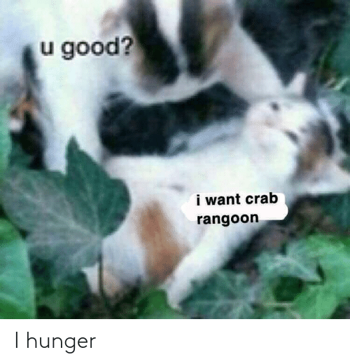 U Good I Want Crab Rangoon I Hunger Reddit Meme On Me Me