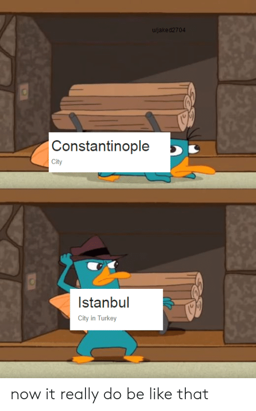 Be Like, Istanbul, and Turkey: u/jaked2704  Constantinople  City  Istanbul  City in Turkey now it really do be like that