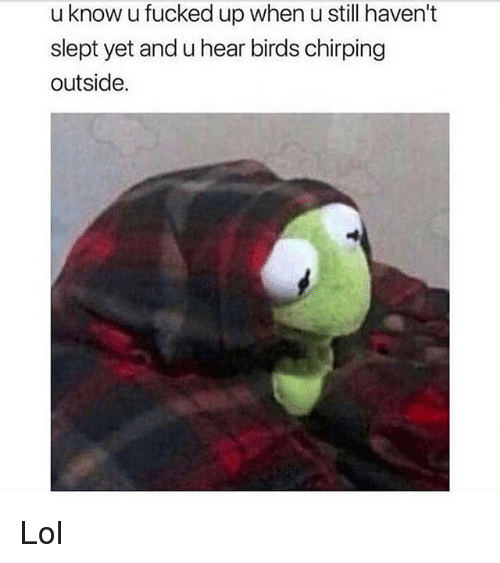 Funny, Lol, and Birds: u know u fucked up when u still haven't  slept yet and u hear birds chirping  outside. Lol