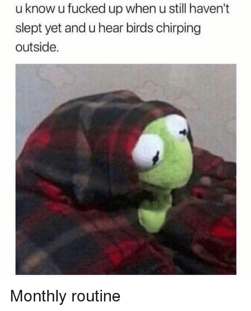 Birds, Still, and When U: u know u fucked up when u still haven't  slept yet and u hear birds chirping  outside. Monthly routine