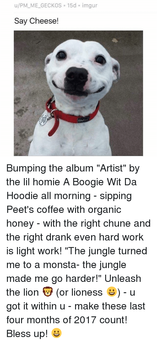 "Bless Up, Homie, and Memes: u/PM_ME_GECKOS 15d imgur  Say Cheese! Bumping the album ""Artist"" by the lil homie A Boogie Wit Da Hoodie all morning - sipping Peet's coffee with organic honey - with the right chune and the right drank even hard work is light work! ""The jungle turned me to a monsta- the jungle made me go harder!"" Unleash the lion 🦁 (or lioness 😀) - u got it within u - make these last four months of 2017 count! Bless up! 😀"