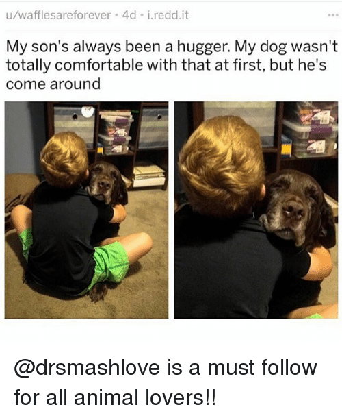Comfortable, Memes, and Animal: u/wafflesareforever 4d i.redd.it  My son's always been a hugger. My dog wasn't  totally comfortable with that at first, but he's  come around @drsmashlove is a must follow for all animal lovers!!